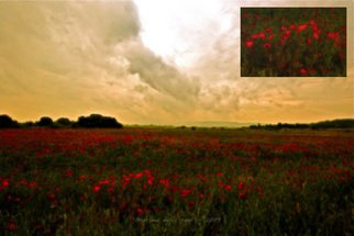 Eric Andrieu; Les Coquelicots, 2009, Original Digital Art, 120 x 80 cm. Artwork description: 241  Not avalaible at this time - Coming soon !Numeric Oil for giclee & high prints on art papers & supports  ( canvas, waterpaper, ultraphoto paper, pvc, aluminium, wood, . . . ) in various sizes. ...