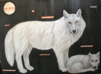 Rita Levinsohn; Aerial Hunting, 2009, Original Painting Acrylic, 40 x 30 inches. Artwork description: 241  Painting portrays wolves that are being murdered in Alaska. ...