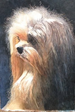 James Dailey; Yorkie In The Night, 2015, Original Watercolor, 14 x 27 inches. Artwork description: 241  This is a water colour of a Yorkie in the night. painted it 2014 in Columbus OH. ...