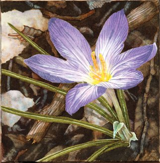Lisa Pagnutti; Crocus, 2015, Original Watercolor, 12 x 12 cm. Artwork description: 241  Take a look at the beauty inside little things. It comes with a wooden support 25x25 cm ...