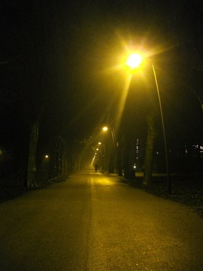 Laurie Delaney; Into The Night, 2011, Original Photography Color, 10 x 8 inches. Artwork description: 241 Night, road, light, paths. ...