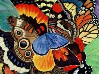 Lucy Arnold; Wings Of California, 2000, Original Giclee Reproduction, 24 x 18 inches. Artwork description: 241 Signed, limited edition giclee print of original pastel.  These magnificent butterflies are all found in California for at least part of their lives.  The colors are very rich and saturated....