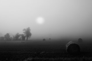 Bernhard Luettmer; Der Nebel, 2010, Original Photography Black and White, 70 x 100 cm. Artwork description: 241                            Landscape in Tuscany/ Landscape, italy, tuscany, morning, totady, tree,                           ...