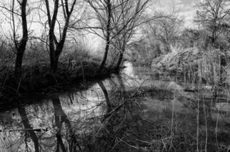Bernhard Luettmer; Lago I, 2009, Original Photography Black and White, 70 x 100 cm. Artwork description: 241              Landscape in Tuscany/ Landscape, italy, tuscany, morning, totady, tree,             ...