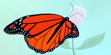 Artist: Lora Vannoord's, title: Monarch Butterfly, 2014, Painting Oil