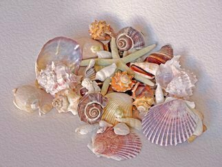 Lynda Lehmann; Peaceful Coexistence, 2015, Original Photography Digital, 24 x 18 inches. Artwork description: 241   These seashells offers a colorful variety of forms and gestures, and only begin to hint at the richness and mysteries of nature.  Keywords:  shells, seashells, marine life, creatures, denizens, ocean dwellers, nature, beauty, patterns, gesture, color, ridges, conch, circular, beautiful, collection, graceful, elegant, mysterious, rich, furrows, lines, ...