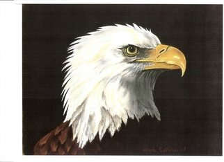 Marcia Collins; Eagle Eye, 2007, Original Pastel, 15 x 12 inches.
