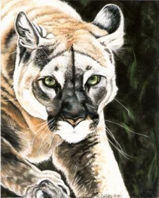 Marcia Collins; On The Prowl, 2008, Original Pastel, 11 x 14 inches. Artwork description: 241  11x14 Soft Pastel on Velour board.  Prints or original available ...