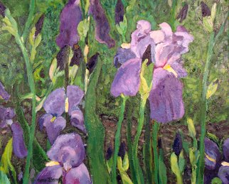 Carolyn Alston Thomas; Patch Of Iris, 2009, Original Printmaking Giclee - Open Edition, 10 x 8 inches. Artwork description: 241   Iris originally painted in acrylics on canvas available as a print...