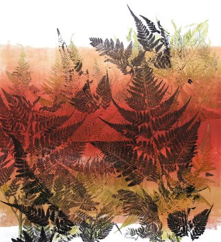 Marisa Keller; Fern Forest, 2007, Original Printmaking Monoprint, 25 x 25 inches. Artwork description: 241  Layers of ferns create a illusion of a fern forest. The plants are printed in negative and positive forms on a warm red/ orange background. ...