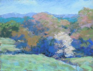 Marsha Savage; Pasture And Dogwood, 2008, Original Pastel, 9 x 12 inches. Artwork description: 241  Blue Ridge GA vista done plein air. ...