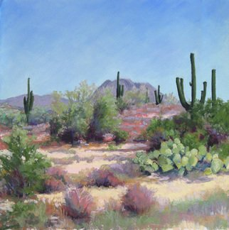 Marsha Savage; Saquaro National Park, 2008, Original Pastel, 16 x 16 inches. Artwork description: 241  This was from a photograph taken near Tucson AZ. ...
