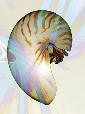 Maureen Chase; Nautilus, 2010, Original Photography Other,   inches. Artwork description: 241      abstract           ...