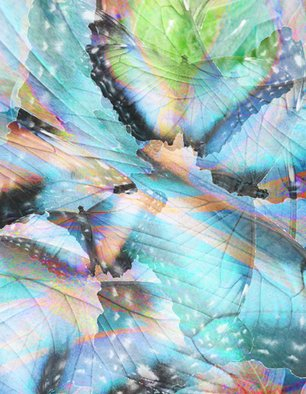 Maureen Chase; Winged Movement, 2010, Original Digital Art,   inches. Artwork description: 241     abstract    ...