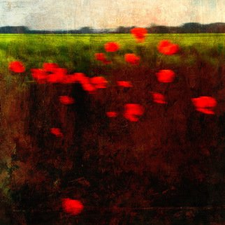 Michael Regnier; Red Poppies, 2008, Original Photography Other, 20 x 20 inches. Artwork description: 241  Prints are archival pigment on acid free cotton rag paper utilizing the latest fine- art digital print making techniques, and printed personally by me. ...