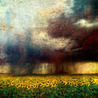 Michael Regnier; Sunflower Storm, 2008, Original Photography Other, 20 x 20 inches. Artwork description: 241  Prints are archival pigment on acid free cotton rag paper utilizing the latest fine- art digital print making techniques, and printed personally by me. ...