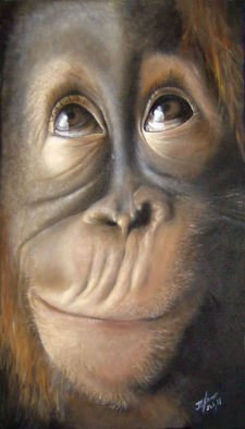 Michelle Iglesias; Charles The Monkey, 2011, Original Painting Oil, 13 x 20 inches. Artwork description: 241  monkey, animal, chimpanzee, cute, baby, curious, thinking, funny, smart, eyes, realism, mouth, nose, close up, orangutan, brown, gray, life like, living, jungle, creature, red hair, hairy face, face, head, wrinkle, expression, looking up, wide open, young, youth, monkeys, primate, rogue, mischievous, zoo, ape, rascal, big nose, big ...