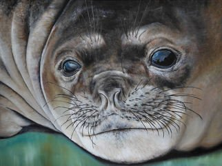 Michelle Iglesias; Ocean Seal, 2012, Original Painting Oil, 24 x 18 inches. Artwork description: 241  seal, sea, cold, water, reflection, eye, eyes wiskers, fat rolls, fur, fury, cute, adorable, childlike, childish, real, realism, nose, wrinkled, brown, white, black, green, teal, blue, tan, sad, happy, upset, emotional, michelle iglesias, oil painting, animal, cloud, sky, mountain, eyelash, eyebrow, mouth, smiling ...