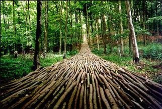 Mikael Hansen; Organic Highway, 1995, Original Installation Outdoor, 300 x  cm. Artwork description: 241 A wedge in a hillside constructed between the trees in a forest. TICKON, Denmark...