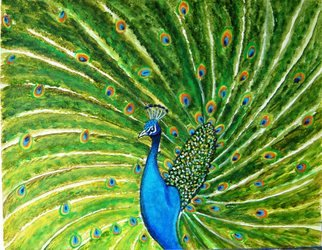 Manjiri Kanvinde; Glorious Peacock, 2010, Original Painting Acrylic, 20 x 16 inches. Artwork description: 241   This painting is a definite 'WOW' ! In' Glorious Peacock' I have tried to capture the beauty of this beautiful bird. In Asia, the feathers of the peacock are considered auspicious and protective. In both the Hindu and the Buddhist traditions, the peacock' s influence is mainly in ...