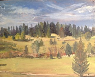 Michelle Mendez; Danville Field, 1992, Original Painting Oil, 12 x 9.7 inches. Artwork description: 241  Danville Vermont, oil on primed wood, edges stained mahogany, ready to hang, Northeast Kingdom   ...
