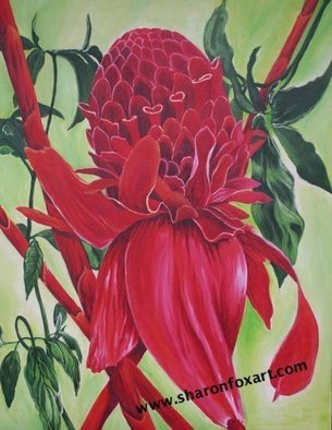 Sharon Fox Mould; Flame, 2007, Original Painting Acrylic, 24 x 30 inches. Artwork description: 241 Painting of torch lily and vine. Floral images from the Caribbean. Dominant colours of red and green....