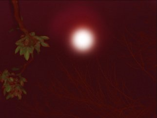 Nancy Bechtol, 'RED MOON', 2006, original Photography Other, 11 x 9  inches. Artwork description: 5871 A night when the glow of the moon was red. Red like I have never seen it before. other sizes available/ other pricing with framed available. request...
