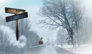 Nancy Bechtol, 'Snowbird Lane', 2009, original Photography Color, 11 x 17  x 1 inches. Artwork description: 5475  Street signs transported to the winter wonderland of the country ...