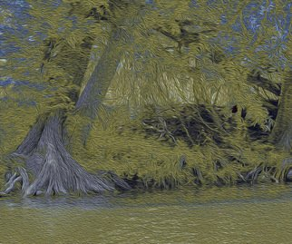 Nancy Wood; Guadalupe River Dark, 2013, Original Photography Other, 20 x 16 inches. Artwork description: 241         Digital Photo on Canvas        ...