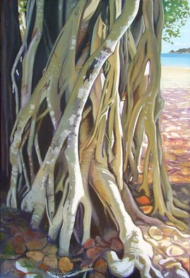 Nicole Murray; Beach Banyan, 2007, Original Painting Oil, 60 x 90 cm. Artwork description: 241  The puzzle of draping roots of a banyan tree grows on the beach in North Queensland, infused with piercing reflected light. ...