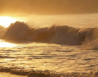 Timothy Oleary; Golden Wave, 2008, Original Photography Other, 14 x 11 inches. Artwork description: 241  The ocean heals with her golden light. ...