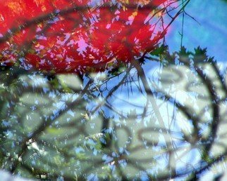 C. A. Hoffman, 'Red Reflection I', 2008, original Photography Color, 10 x 8  inches.