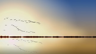 Jean Dominique  Martin; Flying Birds Reflection, 2018, Original Photography Digital, 60 x 40 cm. Artwork description: 241 Kakadu Part North Territory Australia- Flying Birds Sunrise...