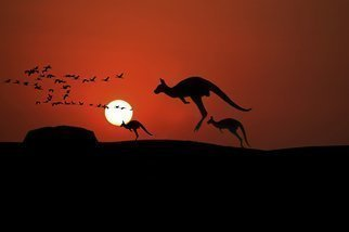 Jean Dominique  Martin; Kangaroo Sunset, 2019, Original Photography Digital, 60 x 40 cm. Artwork description: 241 Australia Ayears Rock Sunset Outback Kangaroo ...