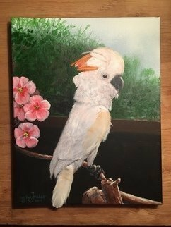 Michael Pickett; Molly Cockatoo, 2019, Original Painting Acrylic, 11 x 14 inches. Artwork description: 241 Molly is a peach colored Cockatoo, The painting was commissioned as a memorial, with three of her feathers applied to the painting. . . ...