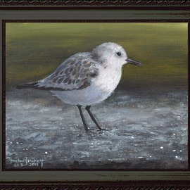 Michael Pickett, , , Original Painting Acrylic, size_width{The_Sanderling-1319089674.jpg} X 8 inches