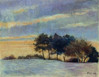 Paula Wilson; Christmas Card 2006, 2006, Original Pastel, 14 x 12 inches. Artwork description: 241  Christmas Card 2006 image created from a reference image on the wetcanvas website using gold Sumi- E ink, and various soft pastels on Pastelboard support. ...