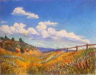 Paula Wilson; High Summer Meadow, 2003, Original Pastel, 13 x 10 inches. Artwork description: 241 Soft pastel painting of a meadow in the western Rocky Mountains close to Vail, Colorado.  This painting is available from Artworks NYC....