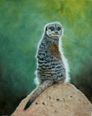 Stephen Powell; Meerkat, 2007, Original Painting Oil, 20 x 25 cm. Artwork description: 241  Meerkat on lookout soaking up the sun  ...