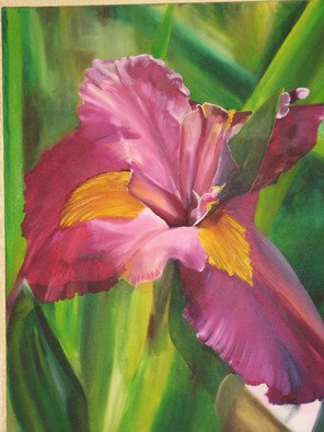 Cherie Salinas; Purple Iris, 2012, Original Painting Oil, 24 x 30 inches. Artwork description: 241   This is a vibrant oil painting using purple and deep greens.  If flowers are your thing this iris is for you.  ...