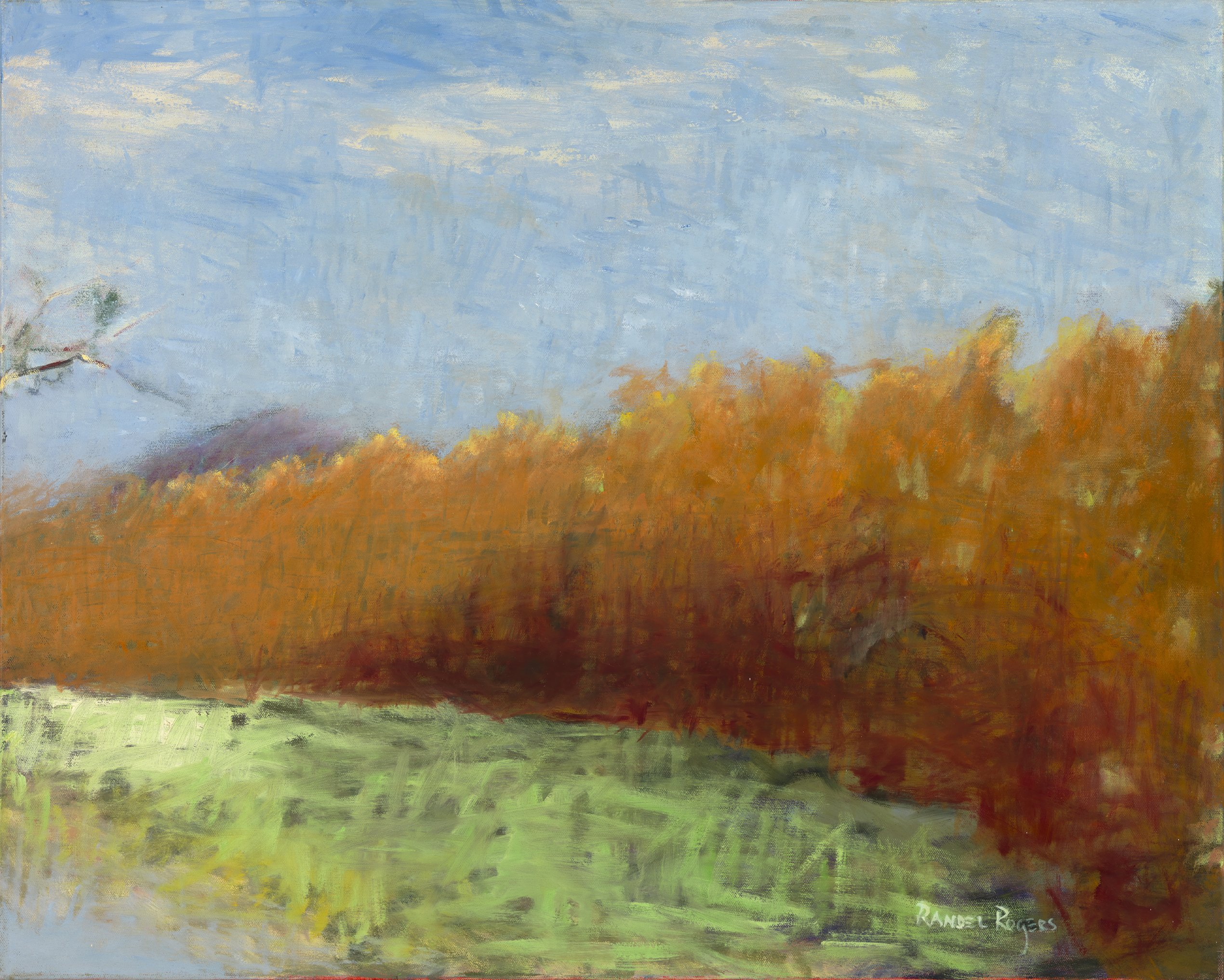 Randel Rogers; Conservancy Brushwood, 2013, Original Other, 36 x 24 inches. Artwork description: 241 Orange. Blue. Green. A sweep of colorful foliage at the edge of Conservancy land...