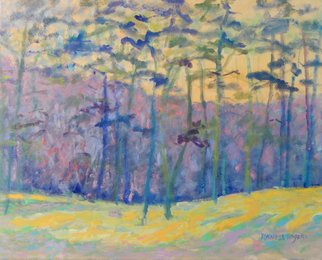 Randel Rogers; Pine Woods, 2017, Original Painting Oil, 20 x 16 inches. Artwork description: 241 Stand of pine trees. Lavender, yellowOil on canvas...