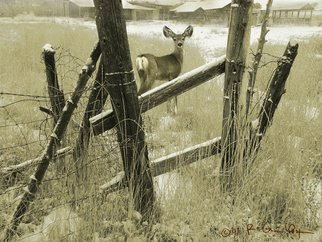 R Christopher Vest; Old Fencerow, Young Mule Deer, 2008, Original Computer Art, 16 x 12 inches. Artwork description: 241  a young fawn appears on a foggy morning on my own farm in southwest colorado. this is a digital painting.this image will be signed and professionally printed using the giclee'process.    ...