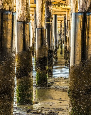 Dick Drechsler; Under The Boardwalk, 2018, Original Photography Mixed Media, 16 x 20 inches. Artwork description: 241 This photograph was taken under the Ventura Pier in Southern California. It is printed here in aluminum which brings out the luster of the shiny pilings. ...
