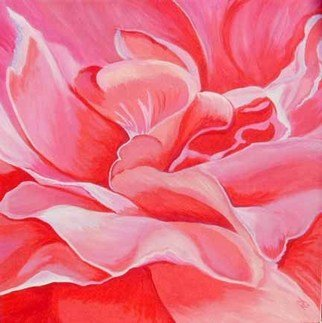 Renee Rutana; Blush, 2006, Original Painting Acrylic, 18 x 18 inches. Artwork description: 241 This is a close up of a rose, has an abstract feel to it. The actual depth of the canvas is 1 3/ 8. * Thick gallery wrapped canvas with painting extending to the sides....