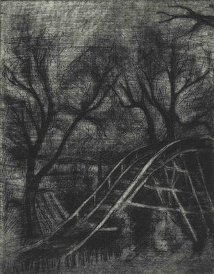 Rachel E Heberling; Empty Grove, 2011, Original Printmaking Intaglio, 3.7 x 5 inches. Artwork description: 241  Etching and mezzotint of abandoned theme park rollercoaster ...