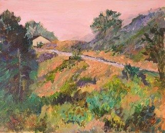 Roz Zinns, 'Afternoon Glow', 2007, original Painting Acrylic, 20 x 16  x 1 inches. Artwork description: 2703  Late afternoon sun coloring the landscape ...