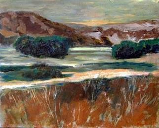 Roz Zinns, 'Last Light', 2003, original Painting Acrylic, 20 x 16  x 1 inches. Artwork description: 3495 California shoreline at dusk.  Wonderful browns and greens against the luminous water....
