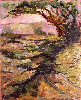 Roz Zinns, 'Morning Has Risen', 2006, original Painting Acrylic, 16 x 20  x 1 inches. Artwork description: 2703  How lovely to watch the colors of morning rise and enjoy the changing shadows. ...