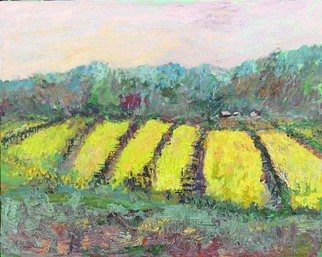 Roz Zinns, 'Mustard Among The Vines', 2009, original Painting Acrylic, 20 x 16  x 2 inches. Artwork description: 2307  Vivid mustard after the rains in the wine country. ...